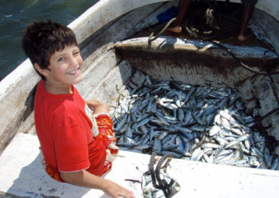 Fishing with nets