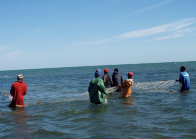 Local fishermen catching with nets